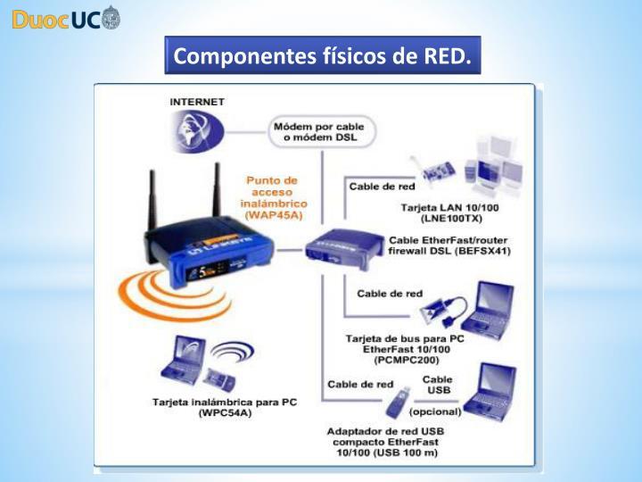 Componentes físicos de RED.