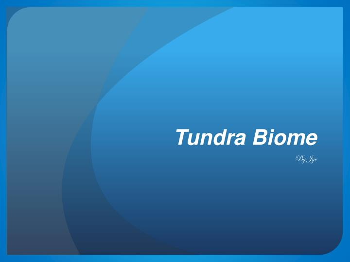 tundra biome n.