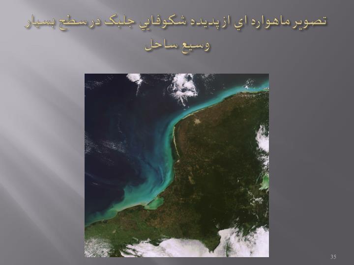 تصوير ماهواره اي از پديده شکوفايي جلبک در سطح بسيار وسيع ساحل