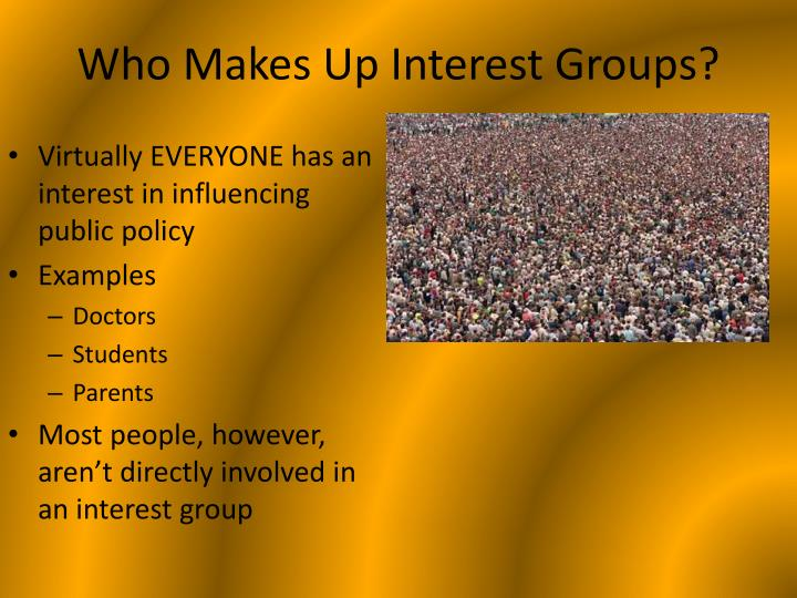 Who makes up interest groups