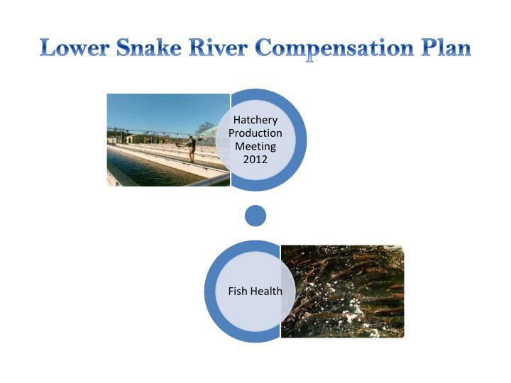 Lower snake river compensation plan