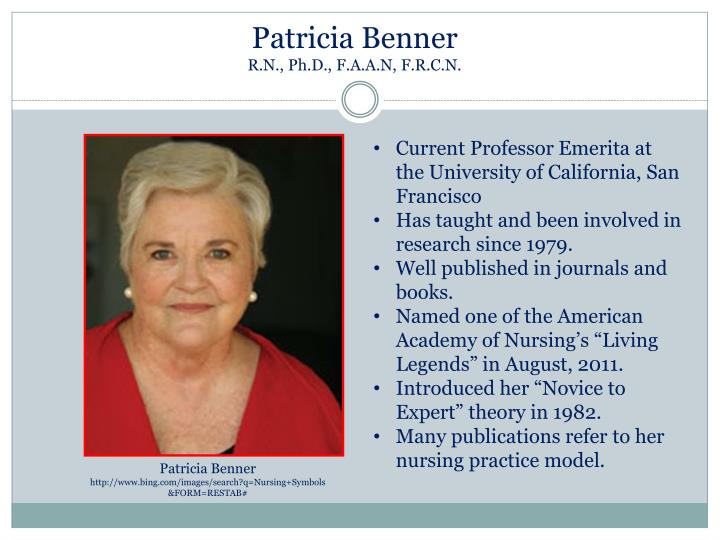 patricia benner theory