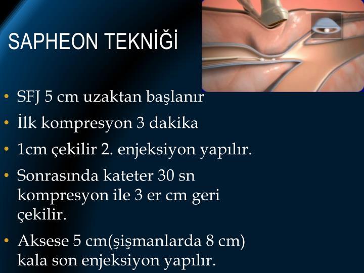 Sapheon