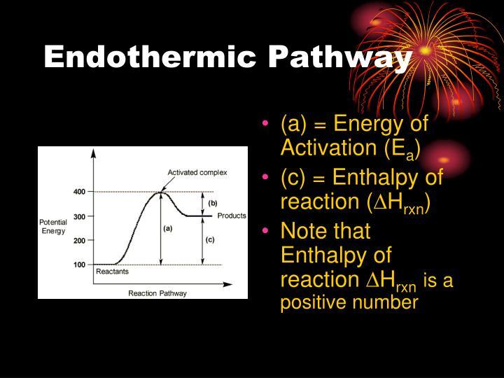 Endothermic Pathway