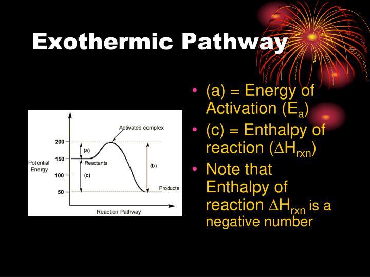 Exothermic Pathway