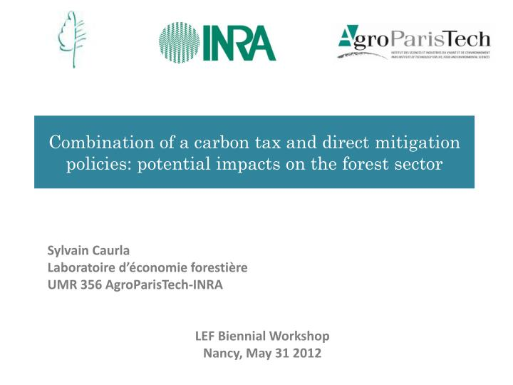 combination of a carbon tax and direct mitigation policies potential impacts on the forest sector n.