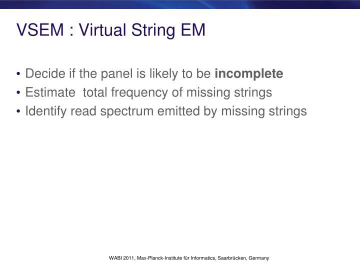 VSEM : Virtual String EM