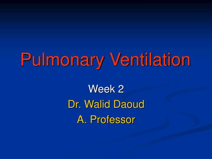 pulmonary ventilation n.