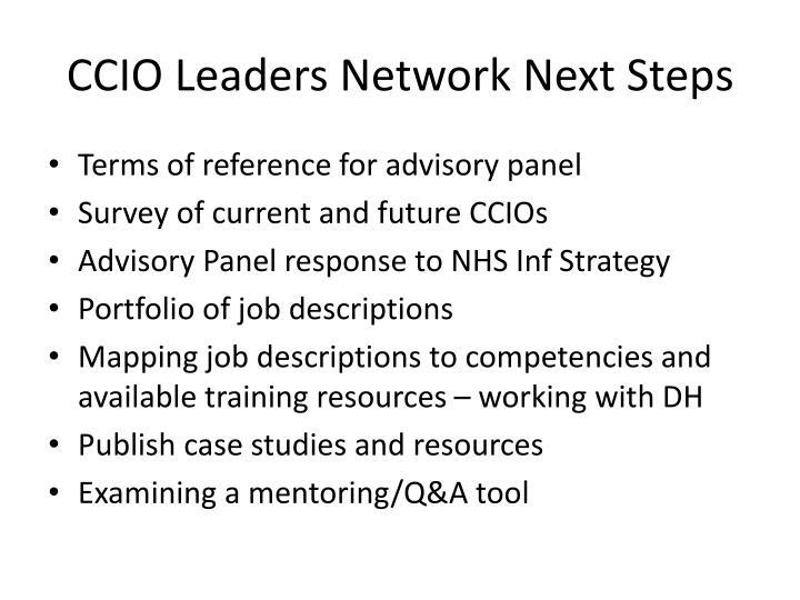 CCIO Leaders Network Next Steps