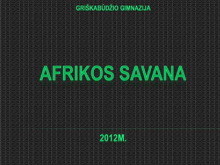 Gri kab d io gimnazija afrikos savana 2012m