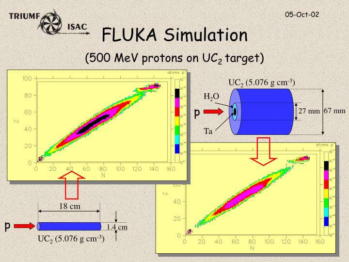 FLUKA Simulation