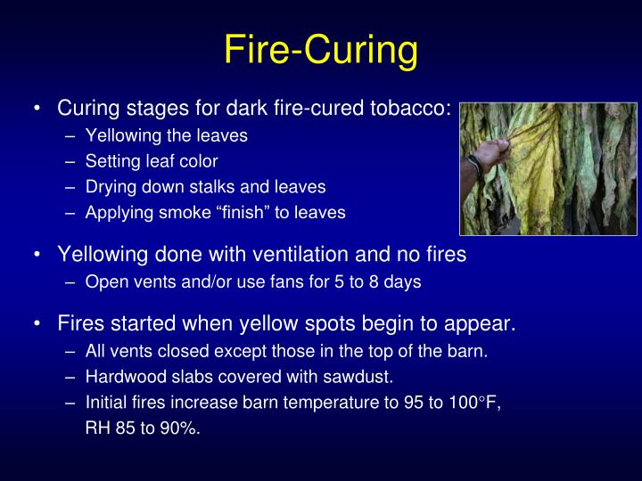 Fire-Curing