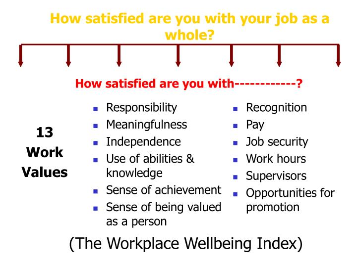How satisfied are you with your job as a whole?
