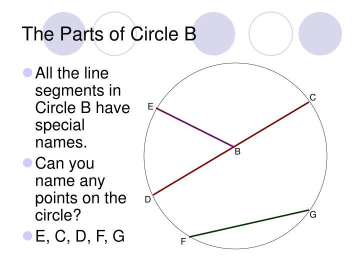 The parts of circle b