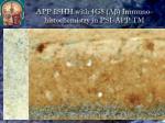 app ishh with gfap immuno histochemistry astrocytes marker in ps1 app tm