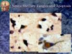 neuro fibrillary tangles and apoptosis