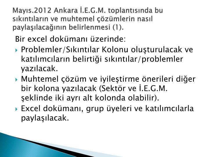 Mayıs.2012 Ankara İ.E.G.M. toplantısında bu sıkıntıların ve muhtemel çözümlerin nasıl paylaşılacağının