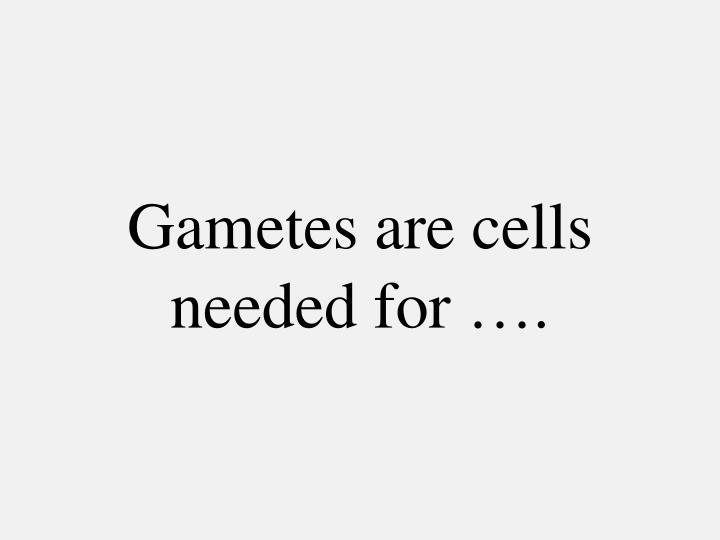 Gametes are cells  needed for ….