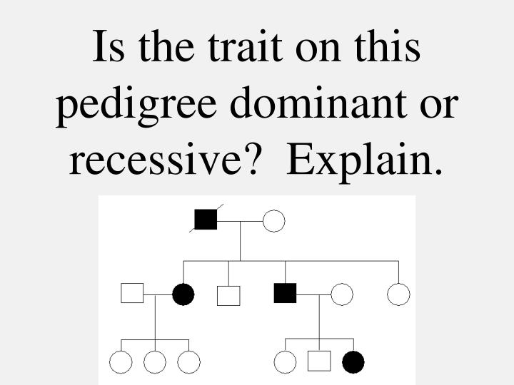 Is the trait on this pedigree dominant or recessive?  Explain.