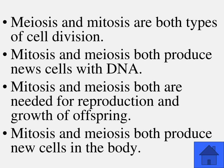 Meiosis and mitosis are both types of cell division.
