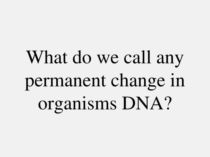 What do we call any permanent change in organisms DNA?