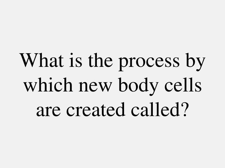 What is the process by which new body cells are created called