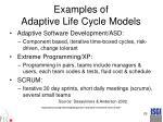 examples of adaptive life cycle models