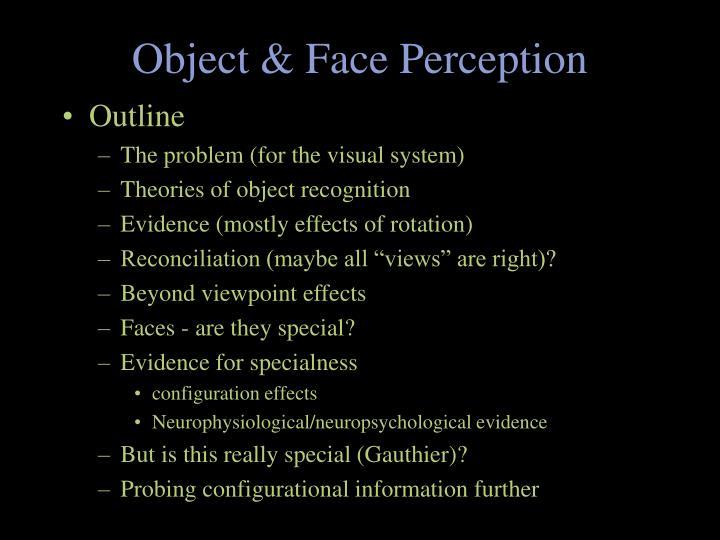 object face perception n.