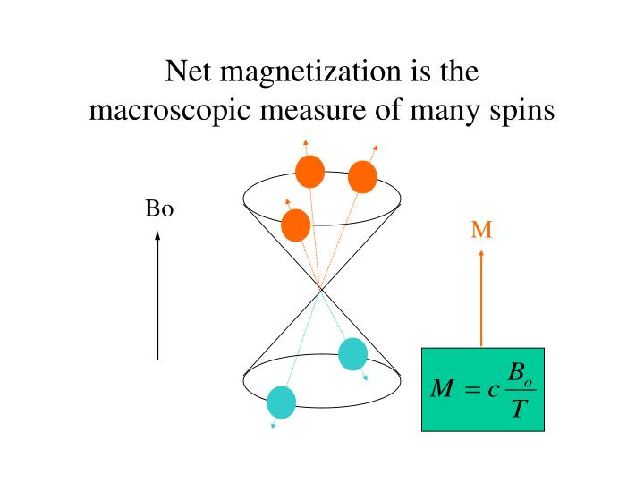 Net magnetization is the macroscopic measure of many spins