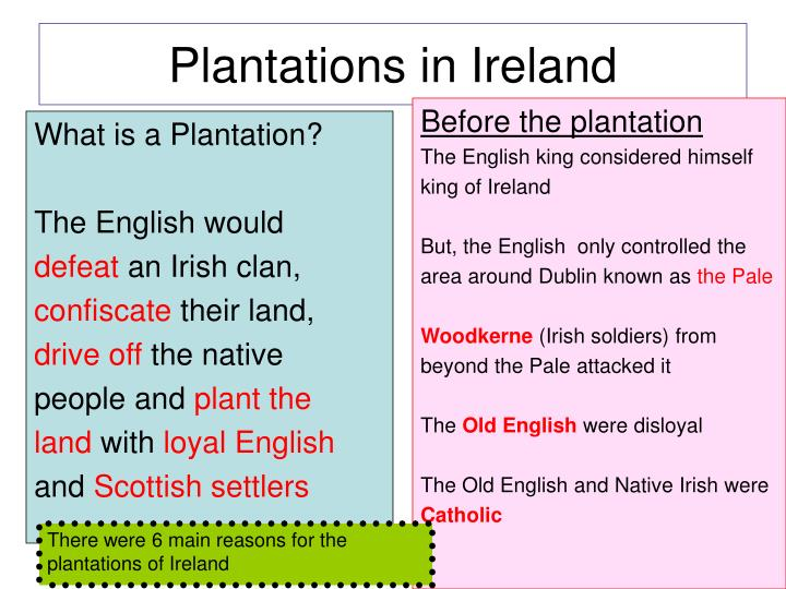 plantations in ireland n.