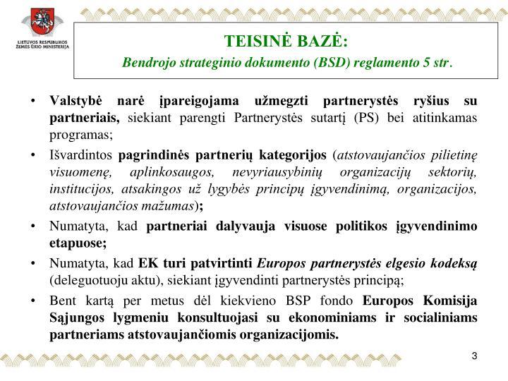 Teisin baz bendrojo strateginio dokumento bsd reglamento 5 str
