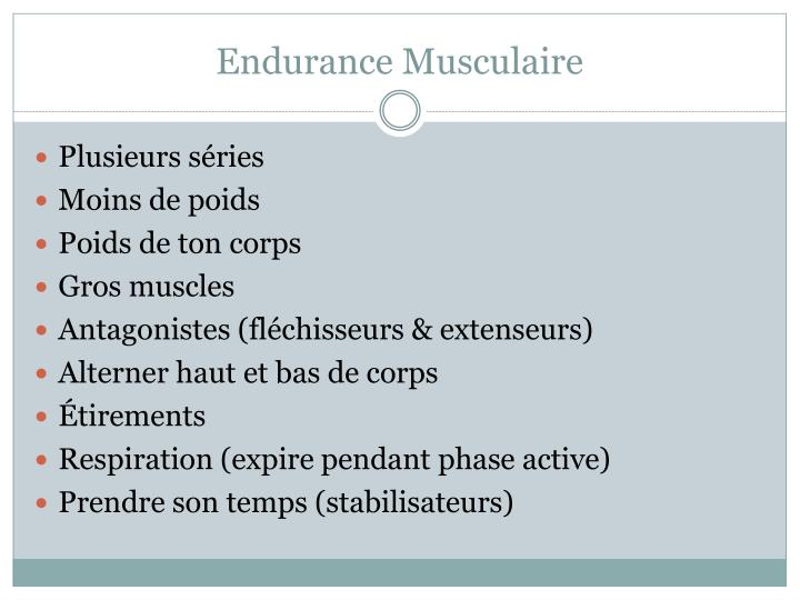 Endurance Musculaire