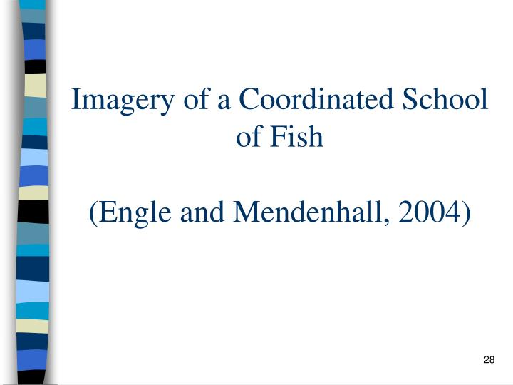 Imagery of a Coordinated School of Fish
