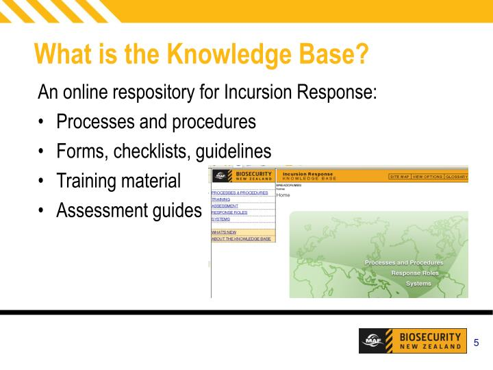What is the Knowledge Base?