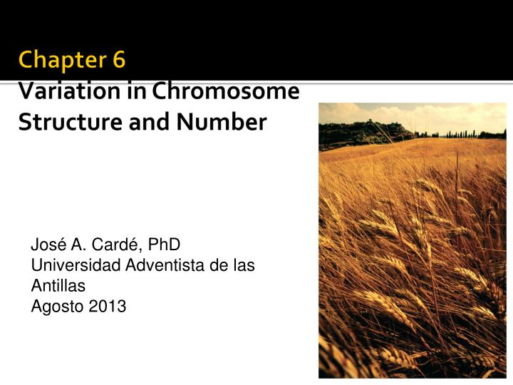 chapter 6 variation in chromosome structure and number n.