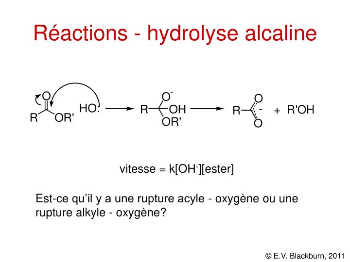 Réactions - hydrolyse alcaline
