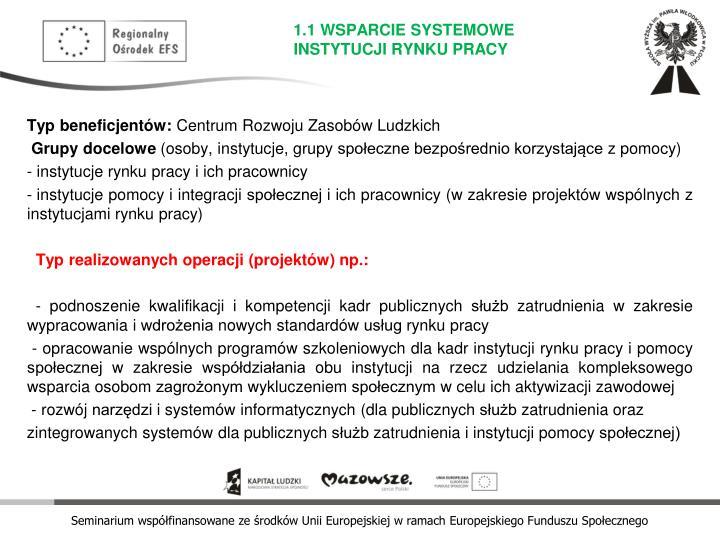 1.1 WSPARCIE SYSTEMOWE INSTYTUCJI RYNKU PRACY