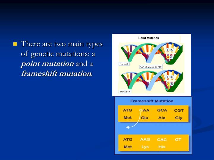 There are two main types of genetic mutations: a