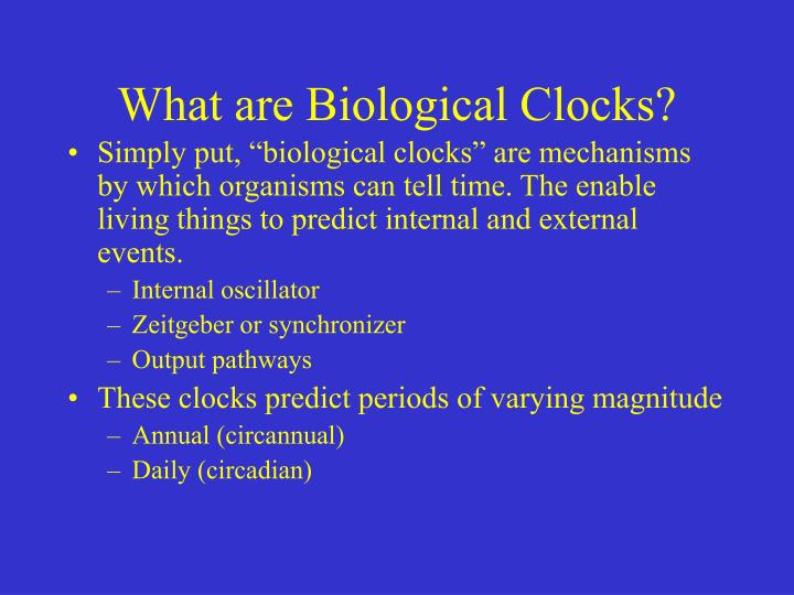 What are Biological Clocks?