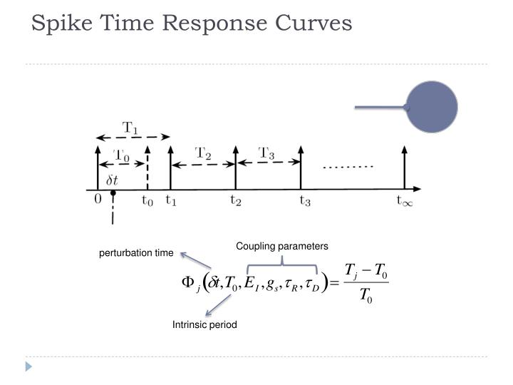 Spike Time Response Curves