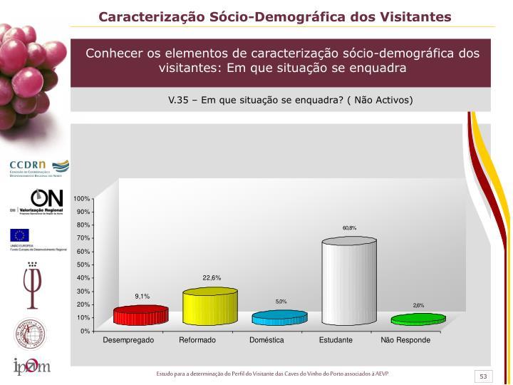 Caracterização Sócio-Demográfica dos Visitantes