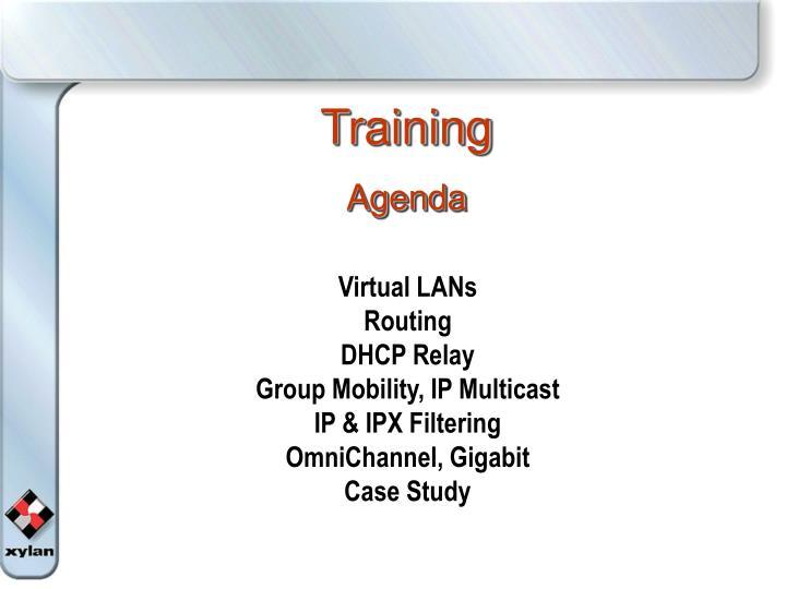 training agenda n.