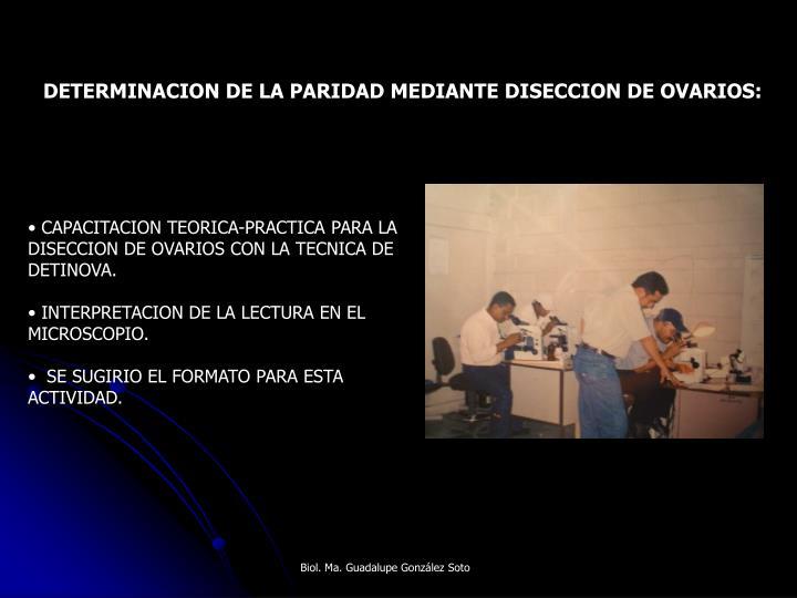 DETERMINACION DE LA PARIDAD MEDIANTE DISECCION DE OVARIOS: