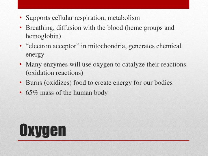 Supports cellular respiration, metabolism