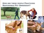 how are these people practicing responsible pet ownership
