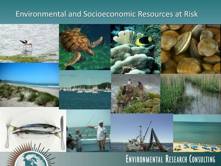 Environmental and Socioeconomic Resources at Risk