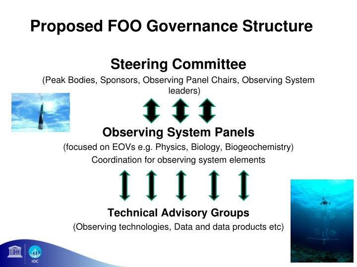 Proposed FOO Governance Structure