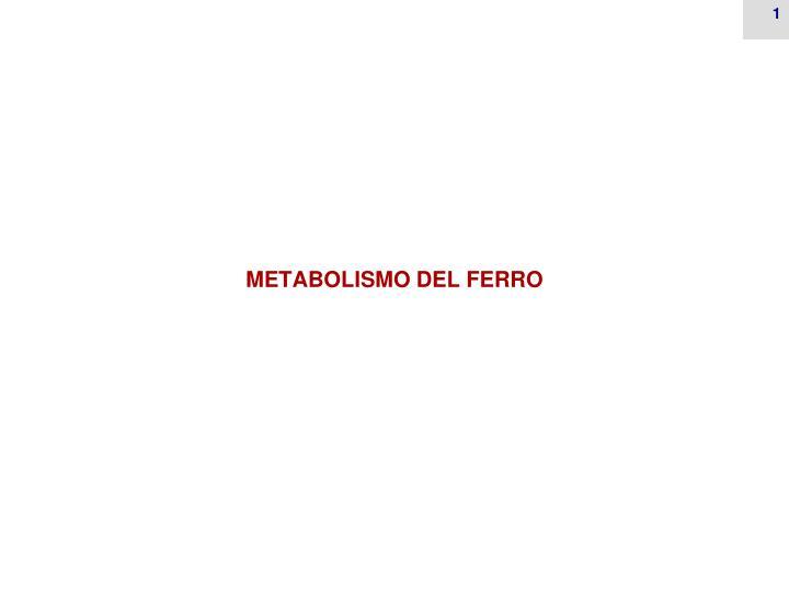 metabolismo del ferro n.
