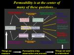 permeability is at the center of many of these questions