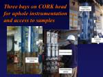 three bays on cork head for uphole instrumentation and access to samples